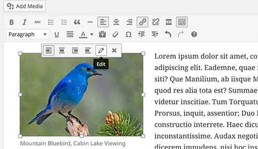 نحوه اضافه کردن حاشیه برای تصویر در وردپرس