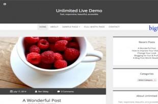 قالب وبلاگی Unlimited برای وردپرس