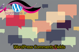 WordPress-Comments-Fields
