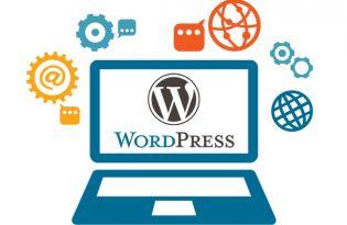 Training-Qablyt- taxonomy- WordPress
