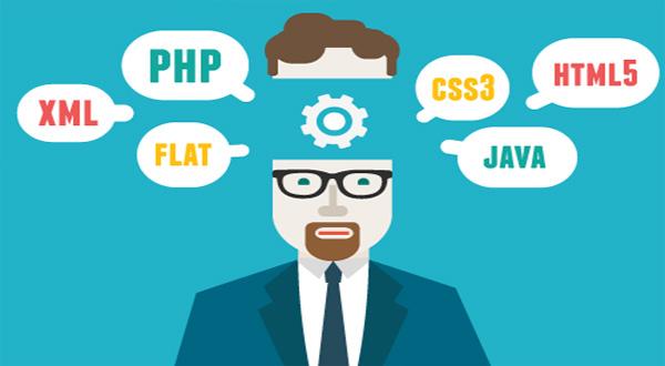 اطلاعاتی در مورد وردپرس function.php ، فایل توابع وردپرس