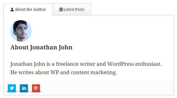 WP-Author-Box-Lite-bigtheme