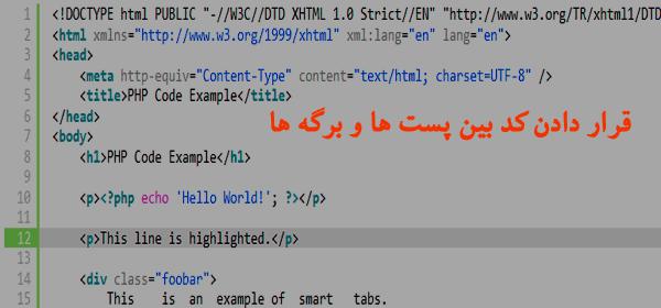 قرار دادن کد بین برگه ها و پست ها - افزونه syntaxhighlighter